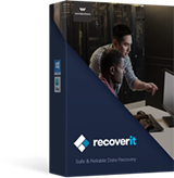 Recoverit Pro (Windows版)