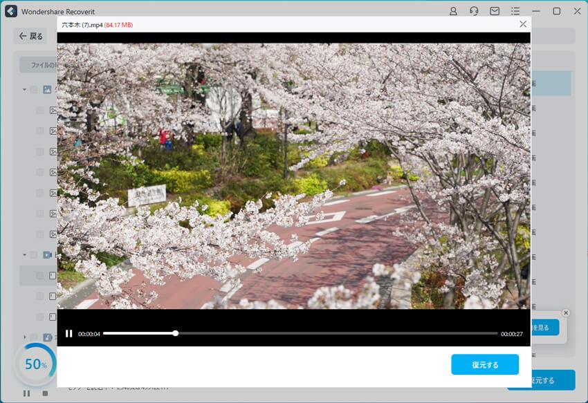 ソニーのビデオカメラ動画修復